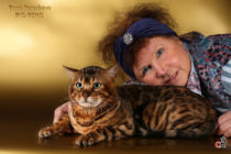 bengalcat and Paraskeva